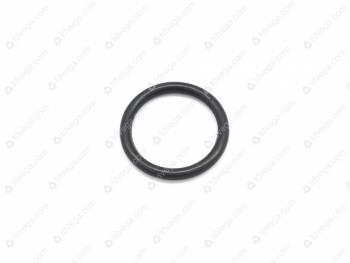 Кольцо уплотнительное штуцера (0069-00-3802032-00)