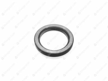 Кольцо- компенсатор дифференциала (3741-00-2403021-00)