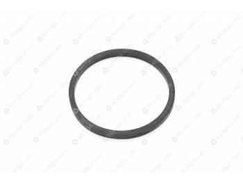 Кольцо уплотнительное суппорта / (2101-00-3501051-00)